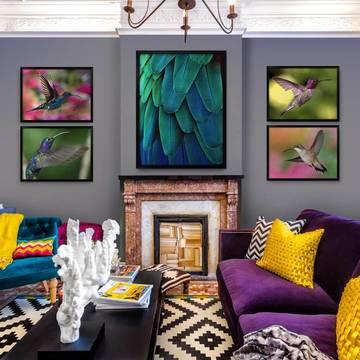 Plakaty do salonu - Kolibry