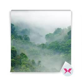 Fototapet - Skog i dimma