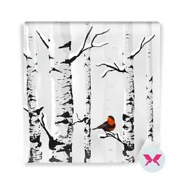 Fototapeta - Ptak i brzozy