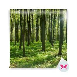 Carta da Parati - Foresta