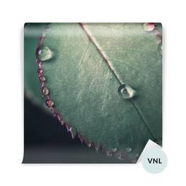 Fototapet - Löv