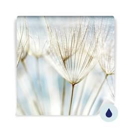 Duvar Resmi banyo - Soyut karahindiba çiçek arka plan