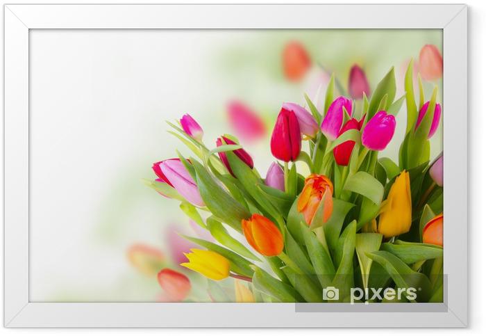 Plakat w ramie Fresh bukiet tulipanów - Tematy