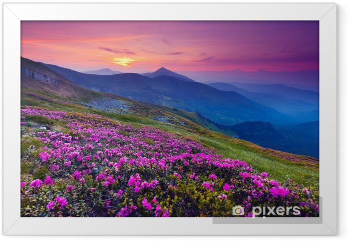 Plakat w ramie Górski krajobraz - Łąki, pola i trawy