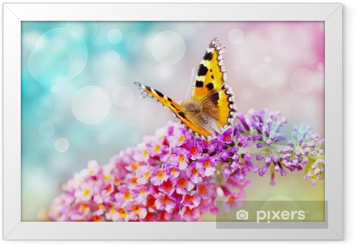 Plakat w ramie Motyl na kwiat - Tematy