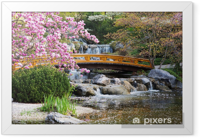 Japanischer Garten im Frühling Framed Poster - Themes