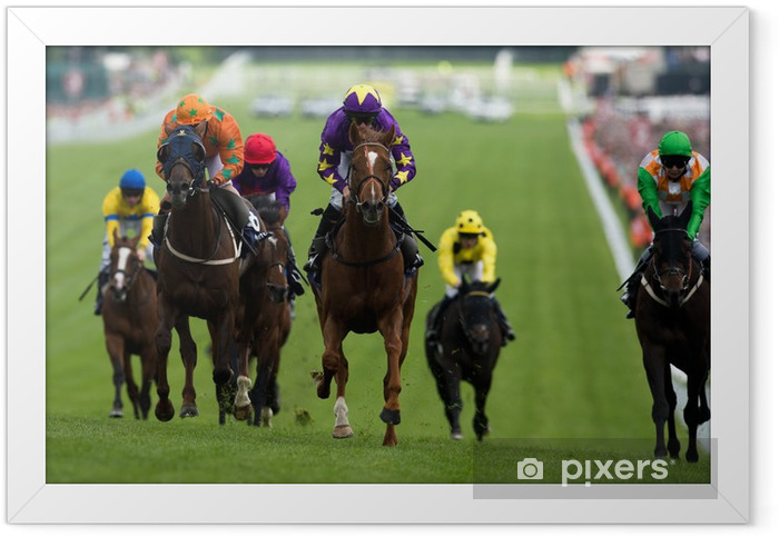 Horse Racing Framed Poster - Themes