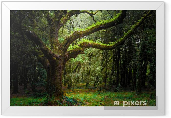 bosco Framed Poster - Forest