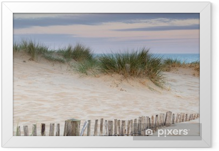 Panorama landscape of sand dunes system on beach at sunrise Framed Poster - Themes