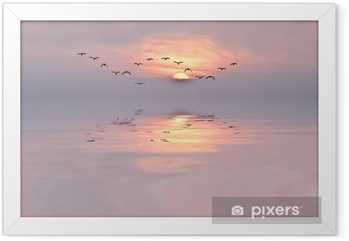 Soft colors of the dawn Framed Poster - iStaging