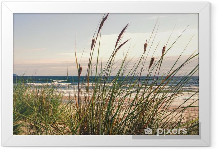 Plakat w ramie Dune trawy w świetle poranka :) - Tematy
