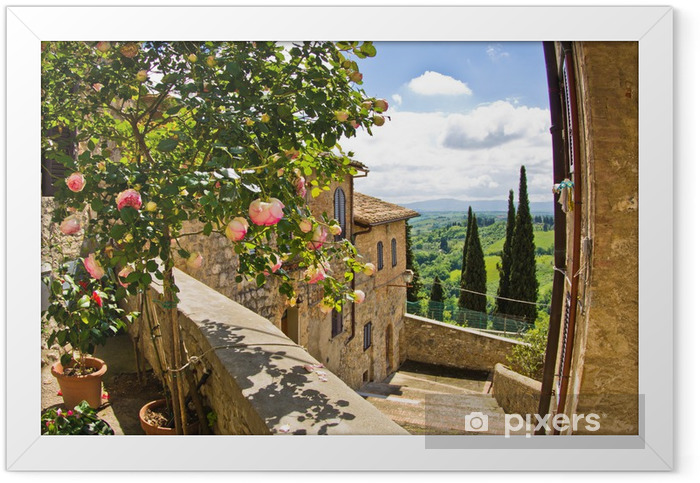 Roses at balcony in San Gimignano, Tuscany landscape background Framed Poster - Themes
