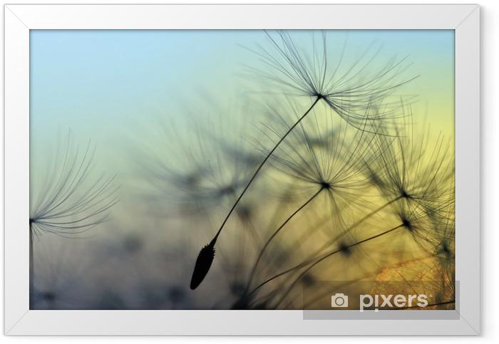 Golden sunset and dandelion, meditative zen background Framed Poster - Themes