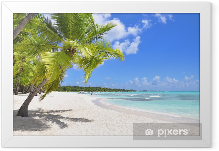 Palm trees and tropical beach Framed Poster - Destinations