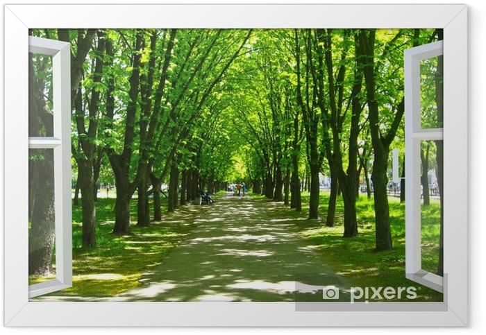 Plakat w ramie Okno otwarte na piękny park z wieloma zielonymi drzewami - Tematy