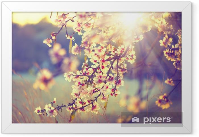 Plakat w ramie Piękna przyrody sceny z kwitnącego drzewa i flary słońca - Tematy