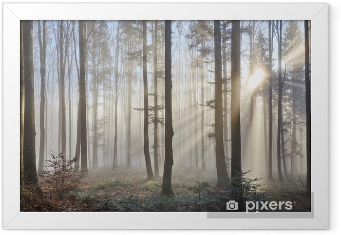 Sun rays through the foggy forest Framed Poster - Themes