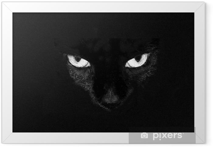 black cat eyes Framed Poster - Mammals