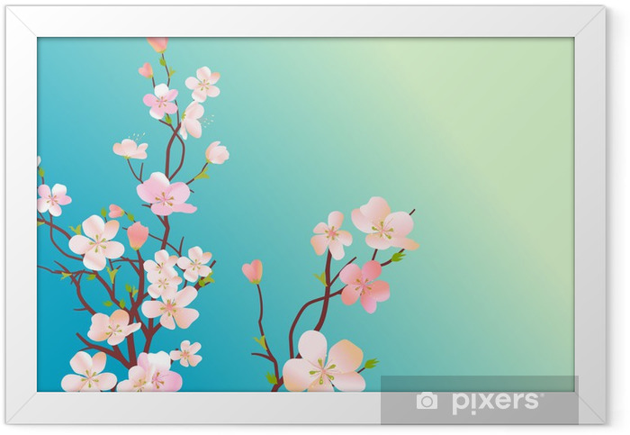 Branch of blossoming cherry tree on bly background Framed Poster - Apple trees