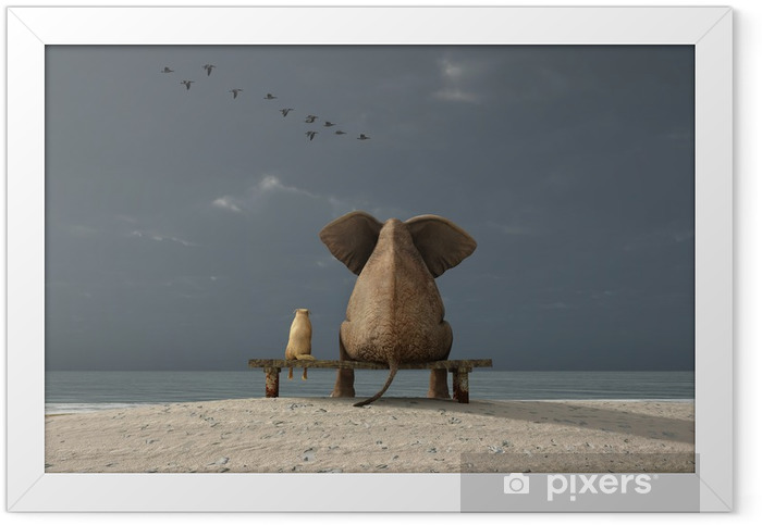 Plakat w ramie Słoń i pies siedzieć na plaży - iStaging