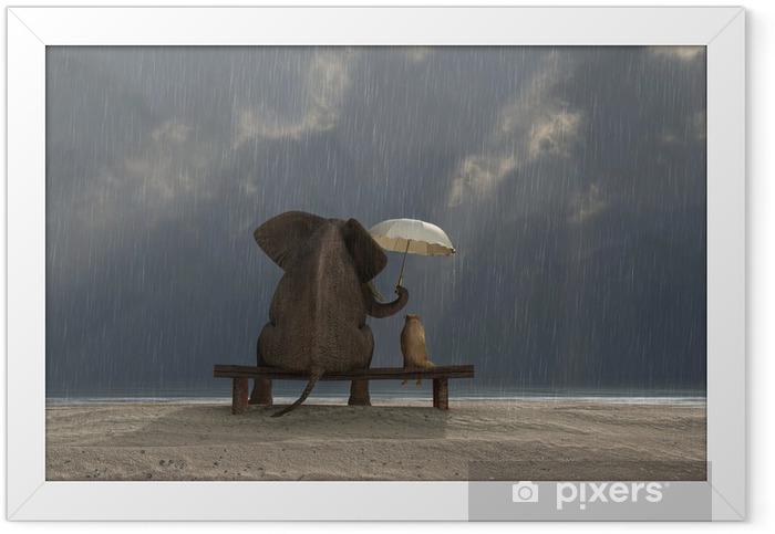 Plakat w ramie Słoń i pies siedzieć w deszczu - Życie