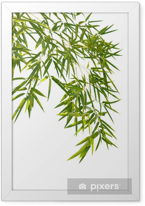 Poster en cadre Feuilles de bambou -