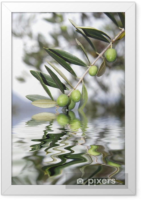 olive riflesse Framed Poster - Olives