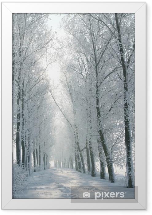 Ingelijste Poster Winter landelijke weg tussen de bomen bedekt met vorst - Thema's