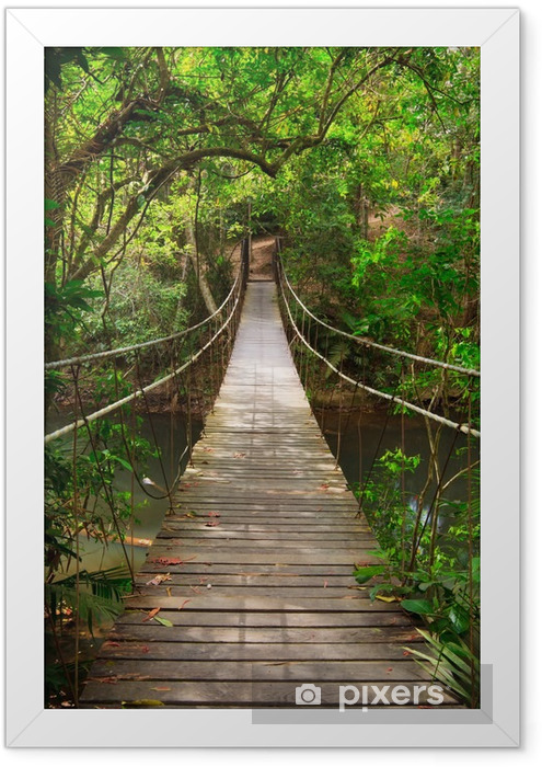 Bridge to the jungle,Khao Yai national park,Thailand Framed Poster -