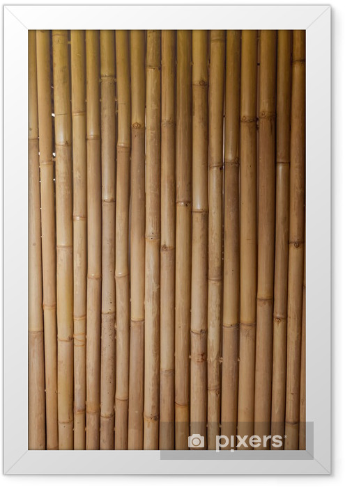 Ingelijste Poster Bamboo -
