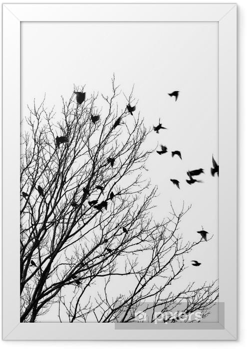 Plakat w ramie Ptaki latające - Style