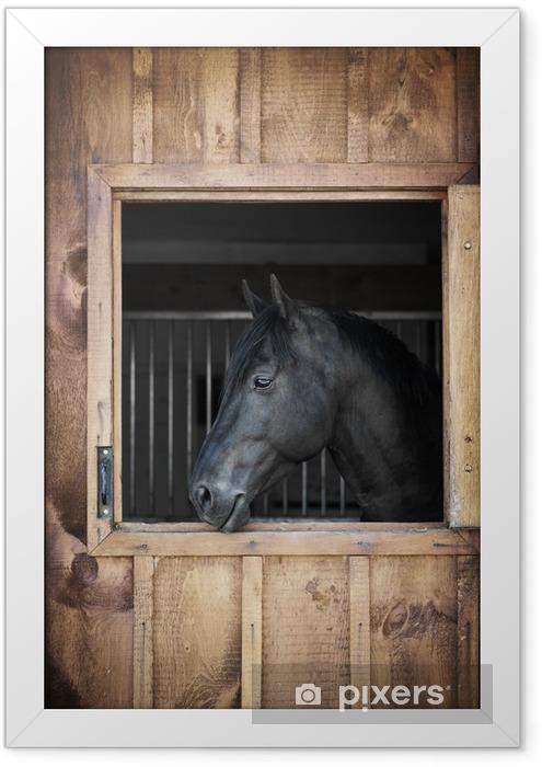 Poster en cadre Cheval dans stable - Thèmes
