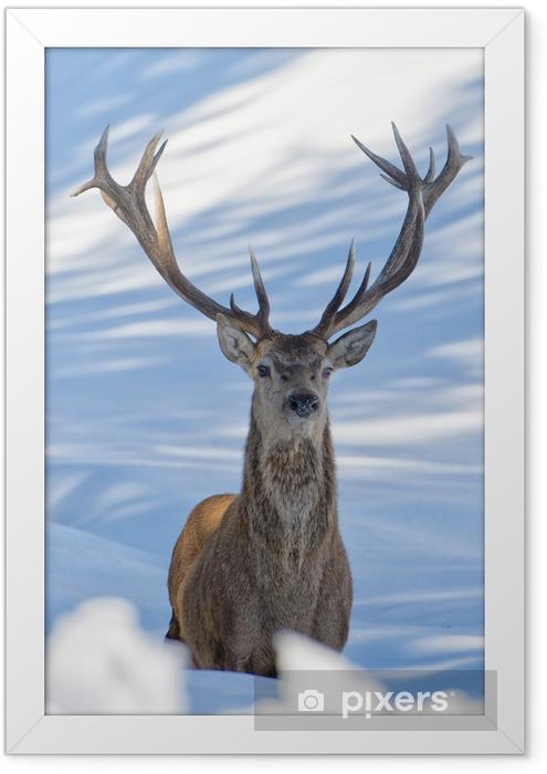 Plakat w ramie Jelenie na tle śniegu - Tematy