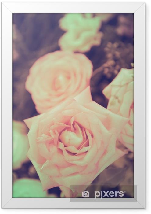 Plakat w ramie Winobrania wzrósł bukiet kwiatów łagodne tło - Rośliny i kwiaty