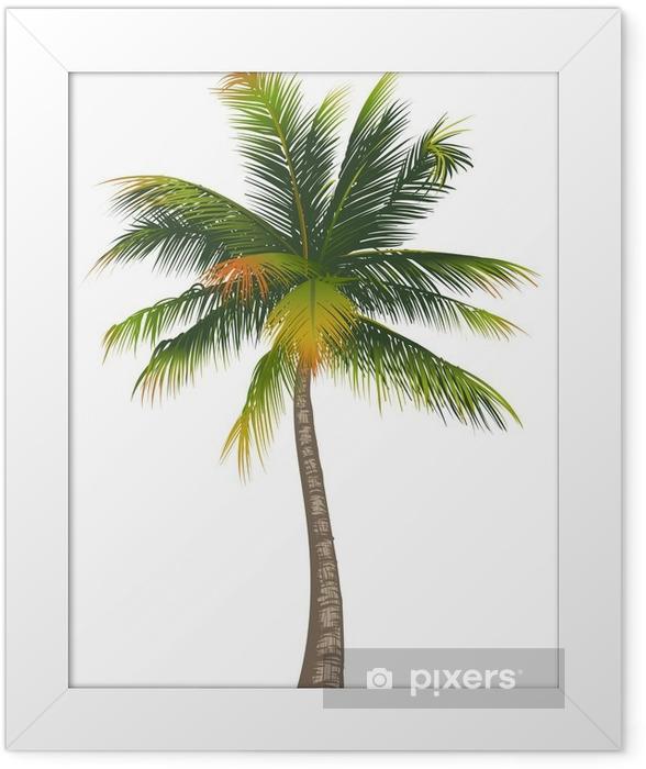 Plakat w ramie Kokosowe palmy na białym tle -
