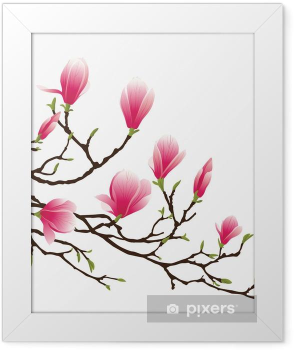 Plakat w ramie Kwiat magnolii -
