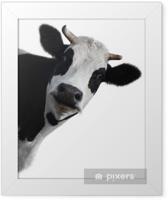 Plakat w ramie Krowa - iStaging