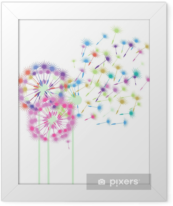 bunte Pusteblumen Framed Poster - Wall decals