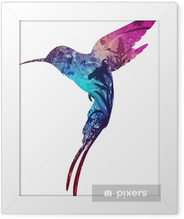 humming-bird Framed Poster - Birds