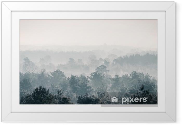 Plakat w ramie Sosnowy zimowy las we mgle. - Krajobrazy
