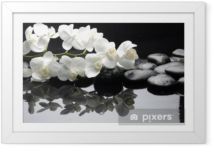 Póster com Moldura Close up white orchid with stone water drops - Estilos