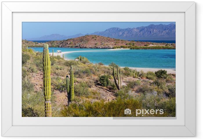 Plakat w ramie Baja California - Natura i dzicz