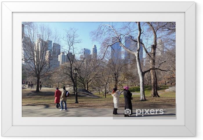 Poster en cadre Central Park - Paysages urbains