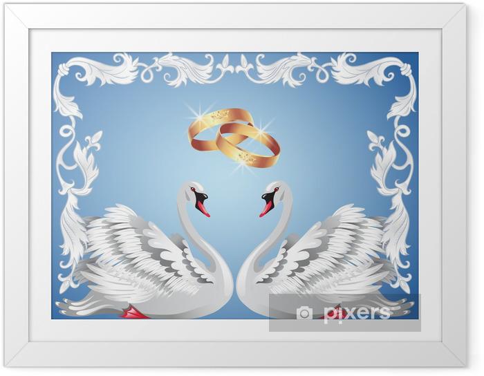 Ingelijste Poster Trouwringen en twee zwanen - Zwanen