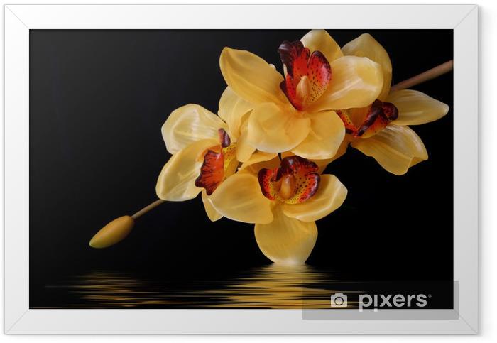 Póster com Moldura orange orchids - Temas