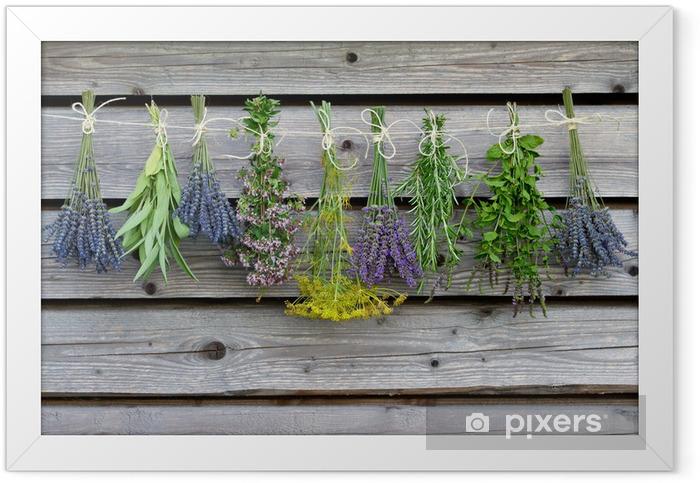 Plakat w ramie Suszenie ziół na drewnianej stodole w ogrodzie - Zioła