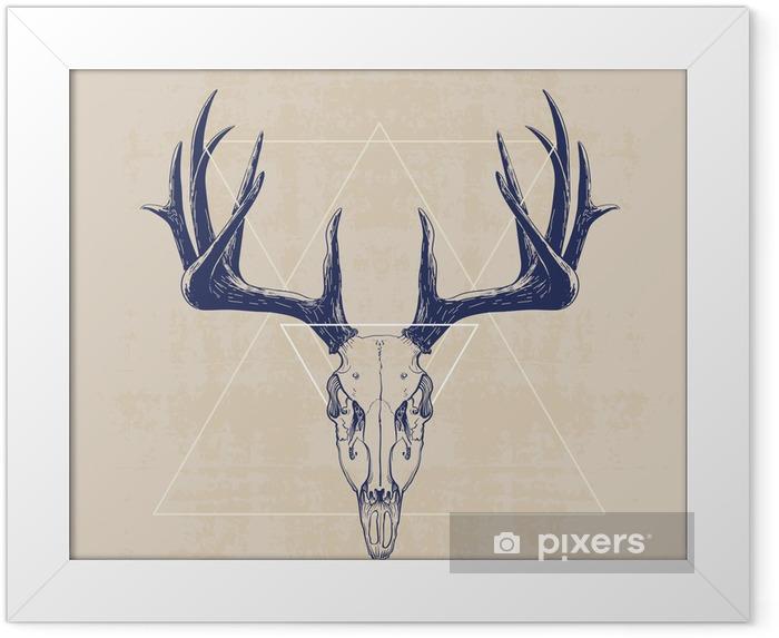 Plakát v rámu deer skull - Savci