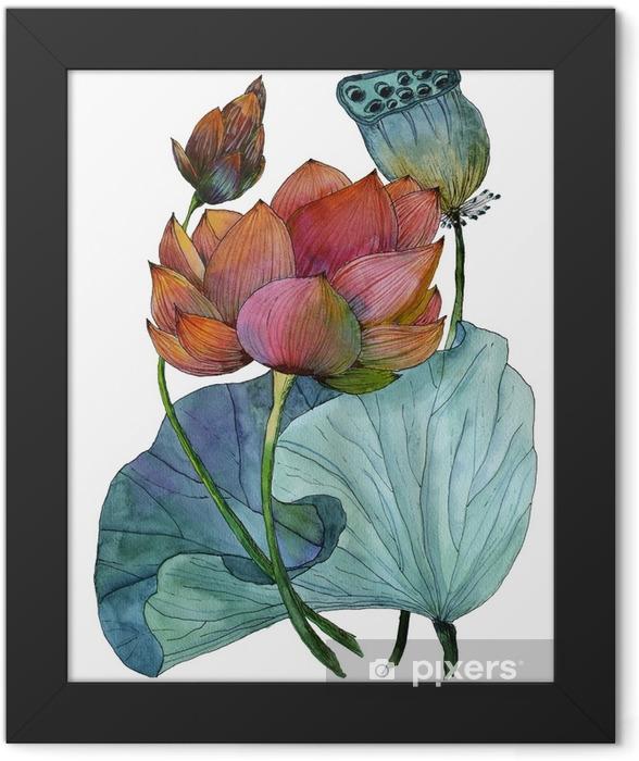 Plakat w ramie Oryginalny obraz akwarelowy roślin wodnych z lotosu - Rośliny i kwiaty