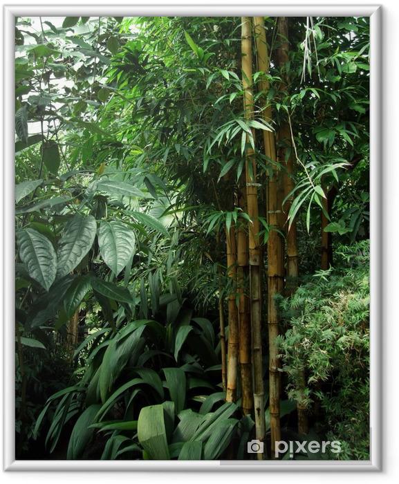 Ingelijste Poster Tropische kas landschap - Thema's