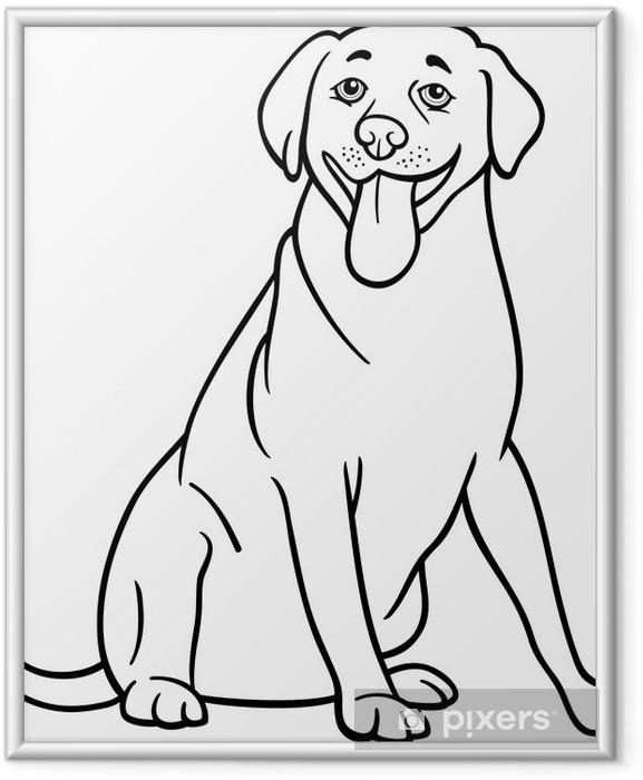 Poster en cadre Labrador retriever de chien pour la coloration - Sticker mural